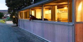 Reitboxen von außen mit einem Pferd