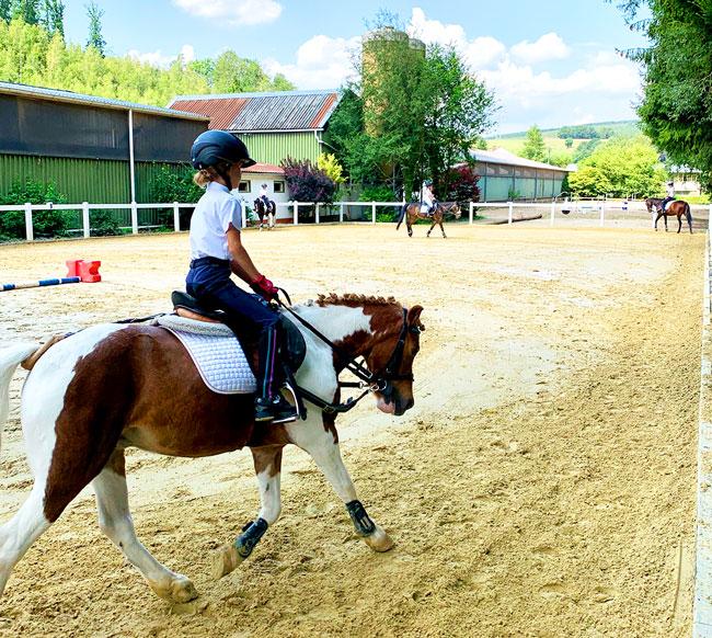 Ponys beim Beritt auf dem Reitplatz